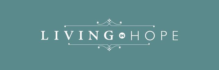shop logo design, branding for shops