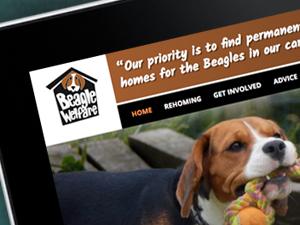 Dog Charity Website Design