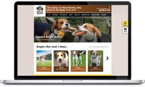 charity website designers, web design for chariies, dog charity web design, website design peak district